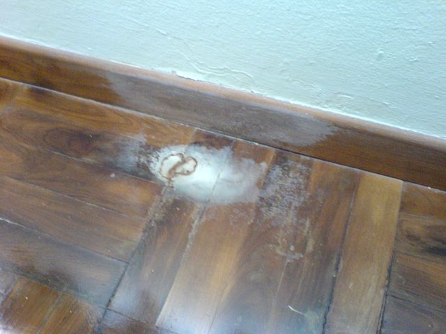 Deterioration of Parquet Due to Water Leakage