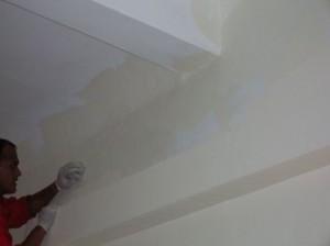 Alexandra Hospital Dry Fusion Paint