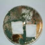 Aegis Treated Cotton
