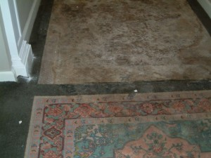 Rug Cleaning After Construction