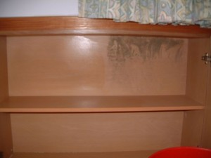 Mold Growth on Tampines Cupboard