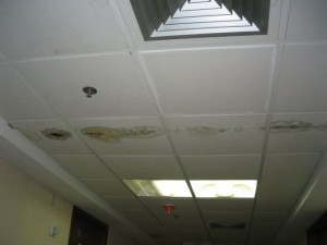 Hospital Contaminated with Microbial Growth Prior to Opening